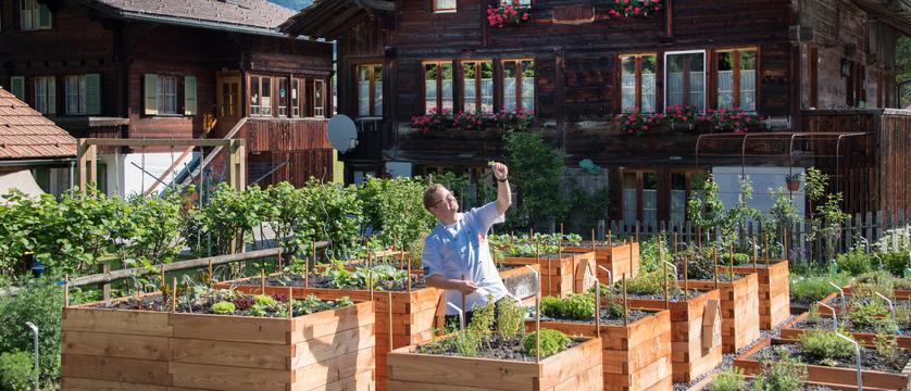 Hotel Alfa-Soleil, Kandersteg, Bernese Oberland, Switzerland -Family_Nico_Herb_Garden.jpg
